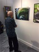 observing art