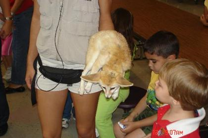Animal Show at Central Campus